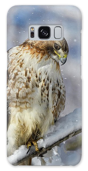 Galaxy Case featuring the photograph Red Tailed Hawk, Glamour Pose by Michael Hubley