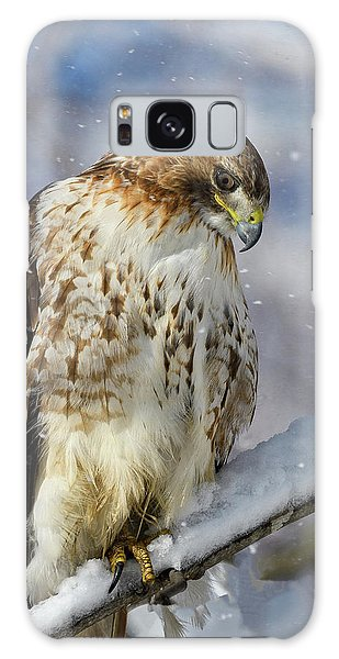 Red Tailed Hawk, Glamour Pose Galaxy Case