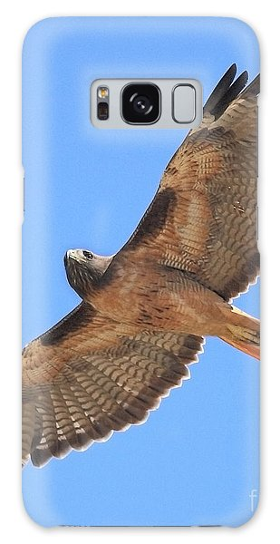 Red Tailed Hawk In Flight Galaxy Case