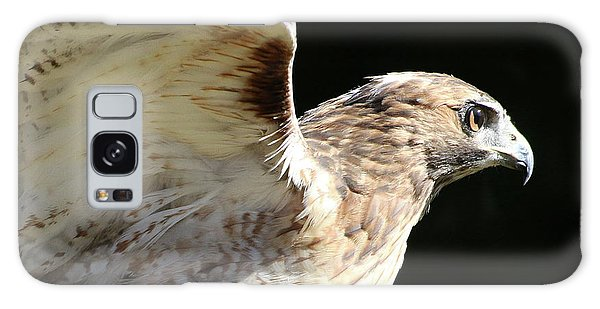 Red-tailed Hawk In Profile Galaxy Case