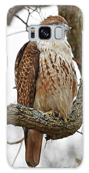 Galaxy Case featuring the photograph Red-tailed Hawk by Ken Stampfer