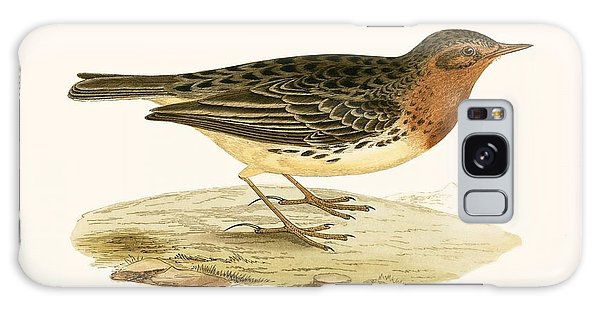 Song Bird Galaxy Case - Red Throated Pipit by English School