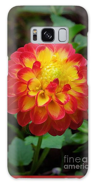 Red Tipped Petals Galaxy Case