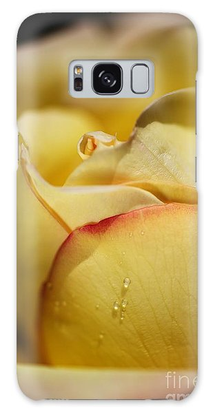 Red Tipped Yellow Rose Galaxy Case