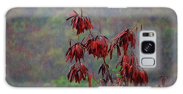 Red Tree In The Rain Galaxy Case