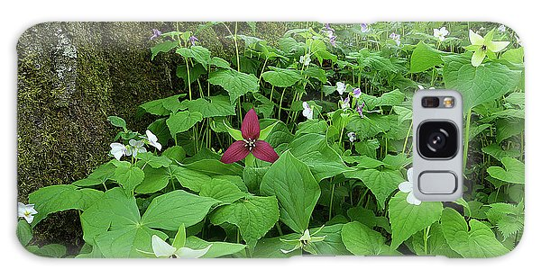 Red Trillium At Center Galaxy Case by Alan Lenk