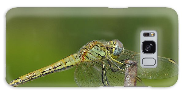 Red-veined Darter Dragonfly Galaxy Case