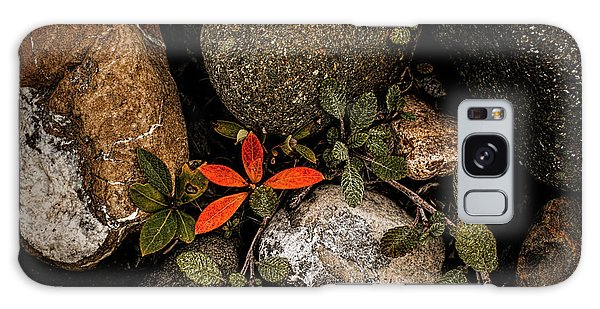 Galaxy Case featuring the photograph Red Willow, Dryas by Fred Denner