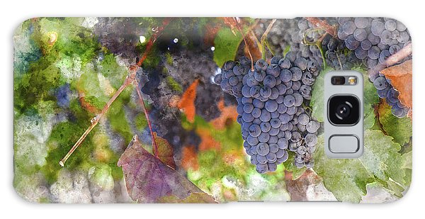 Red Wine Grapes On The Vine In Wine Country Galaxy Case