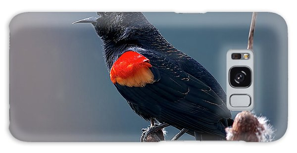 Red-winged Blackbird Singing Galaxy Case