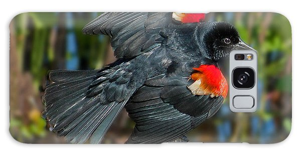 Red-winged Blackbird Galaxy Case by Suzanne Stout