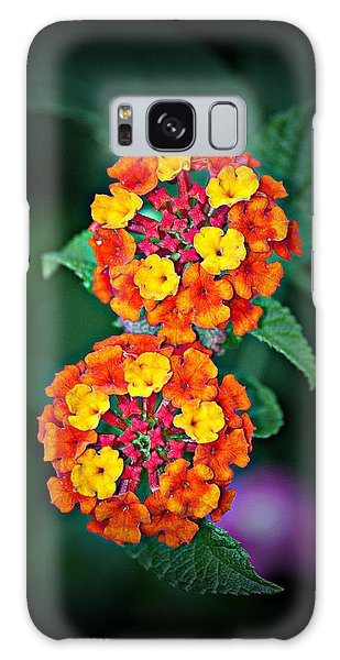 Red Yellow And Orange Lantana Galaxy Case