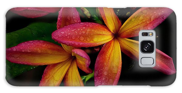 Red/yellow Plumeria In Bloom Galaxy Case