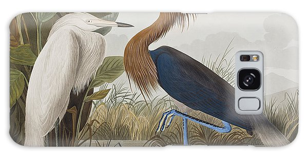 Reddish Egret Galaxy S8 Case