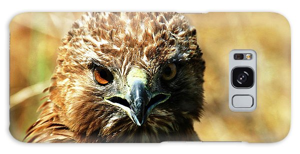 Redtail Hawk Galaxy Case
