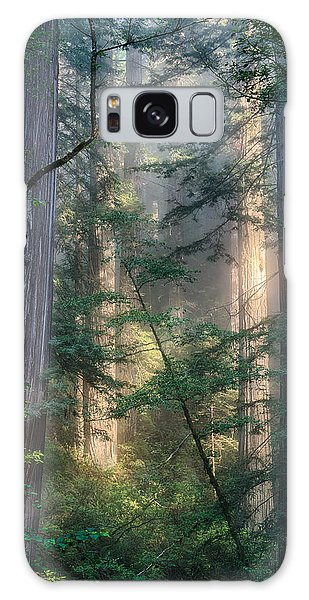 Redwood Network Galaxy Case