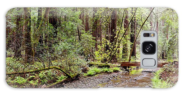 Redwood Creek Flowing Through Muir Woods National Monument - Mill Valley Marin County California Galaxy Case