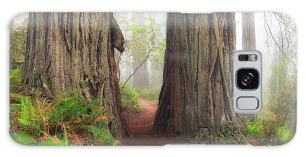 Redwood Trail Galaxy Case