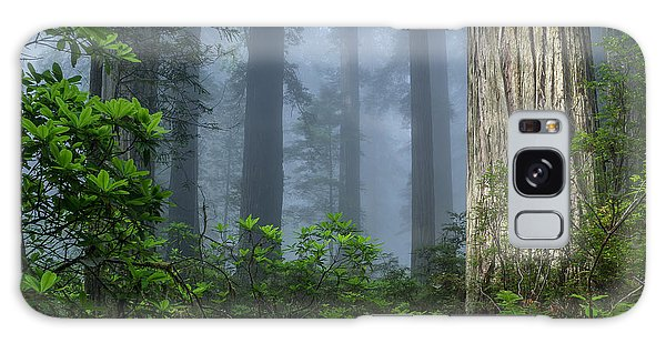 Redwoods In Blue Fog Galaxy Case