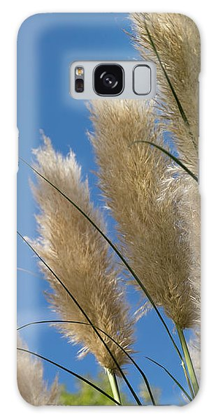 Reeds Against Sky Galaxy Case