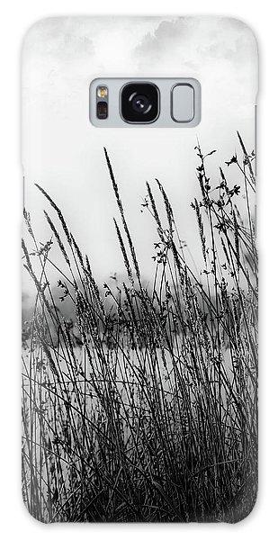 Reeds Of Black Galaxy Case