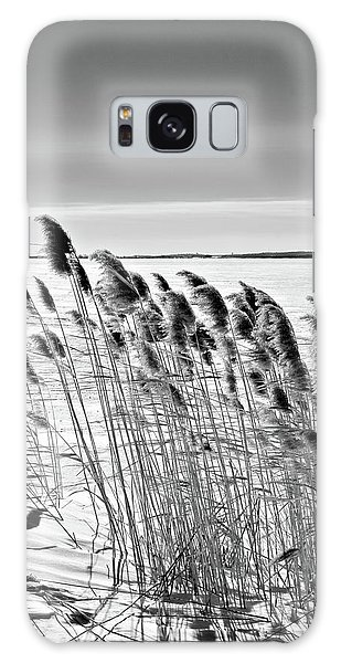Reeds On A Frozen Lake Galaxy Case