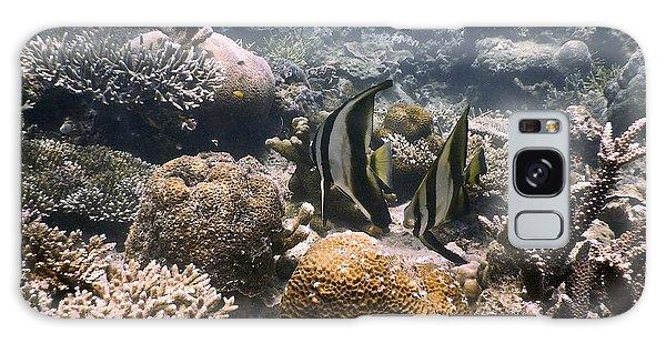 Reef Galaxy Case