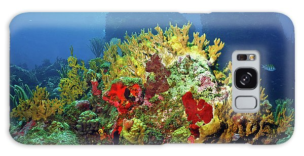 Reef Scene With Divers Bubbles Galaxy Case