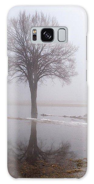 Reflecting Tree Galaxy Case