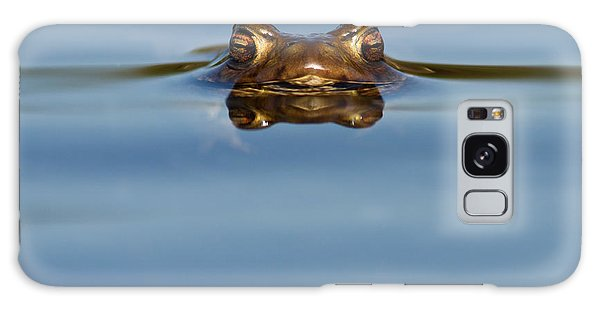 Reflections - Toad In A Lake Galaxy Case