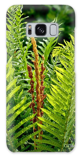 Refreshing Fern In The Woodland Garden Galaxy Case