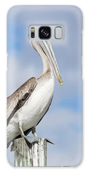 Regal Bird Galaxy Case