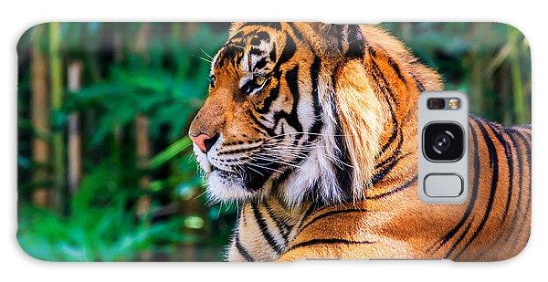 Regal Tiger Galaxy Case
