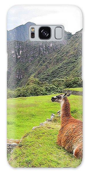 Relaxing Llama In Machu Picchu Galaxy Case