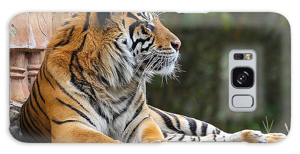 Galaxy Case featuring the photograph Relaxing Tiger by Dart and Suze Humeston