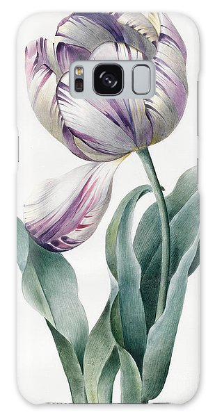Decorative Galaxy Case - Rembrandt Tulip by Louise D'Orleans