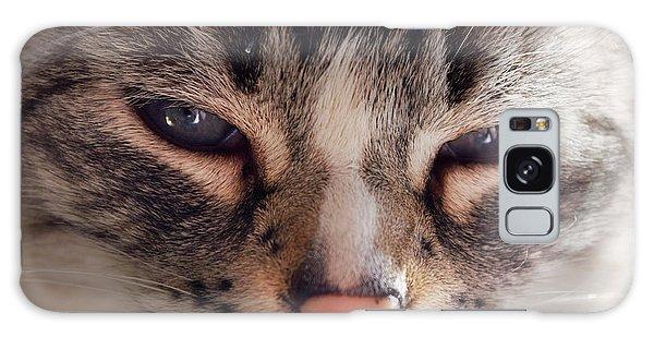 Remi Cat Galaxy Case