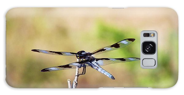 Rest Area, Dragonfly On A Branch Galaxy Case