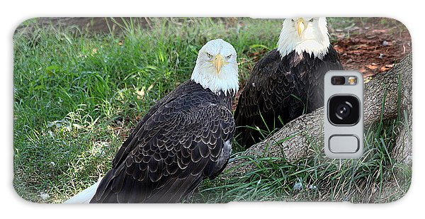 Resting Bald Eagles Galaxy Case