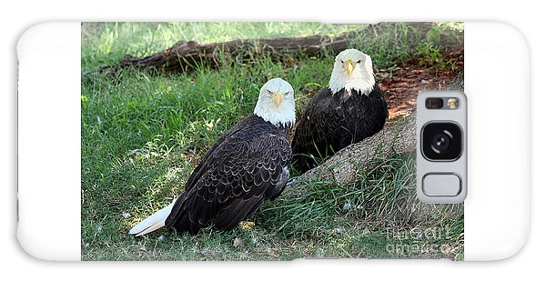 Resting Bald Eagles Galaxy Case