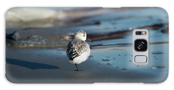 Padre Island National Seashore Galaxy S8 Case - Resting Dunlin by Frank Madia