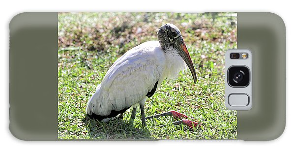Resting Wood Stork Galaxy S8 Case