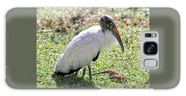 Resting Wood Stork Galaxy Case