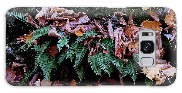 Resurrection Fern Along The Appalachian Trail Galaxy Case