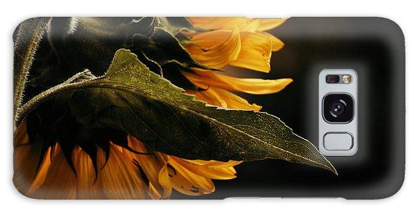 Reticent Sunflower Galaxy Case