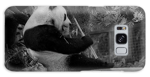 Revel In Bamboo Galaxy Case