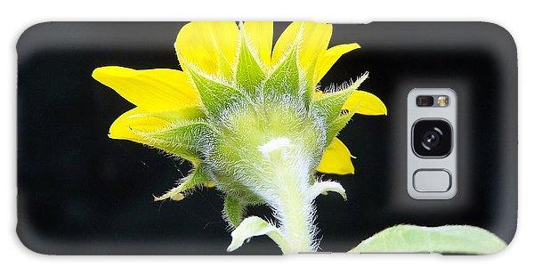Reverse Sunflower Galaxy Case
