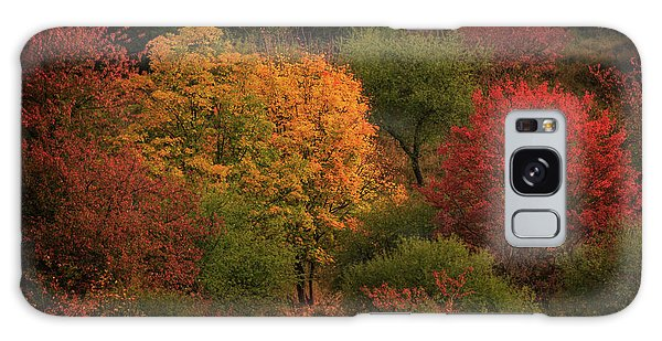 Rhine Valley Autumn Galaxy Case