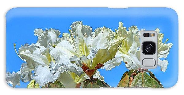 Rhododendron Ciliicalyx Dthn0213 Galaxy Case