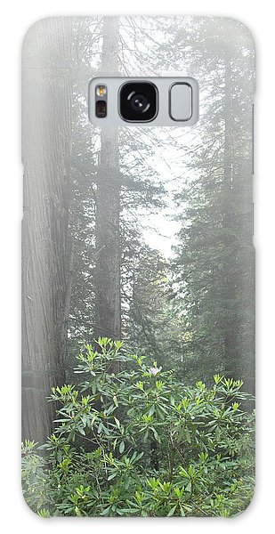 Rhododendrons In The Fog Galaxy Case